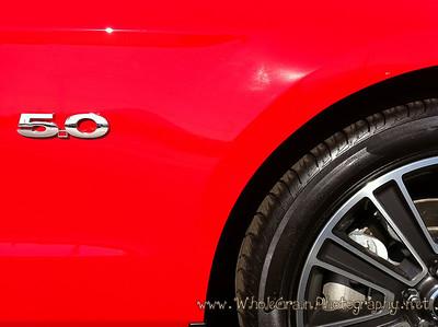 20101002_Mustang_0009