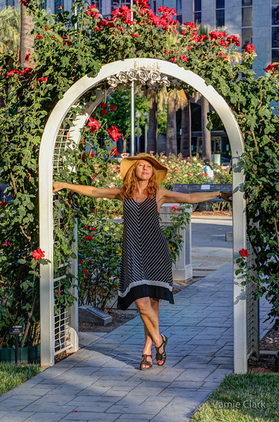 International Worl Peace Rose Garden. Sacramento, CA