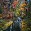 Savage Creek