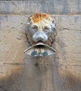 Marble Lion Water Spout