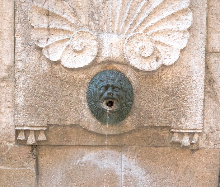 Ancient Bronze  Water Spout
