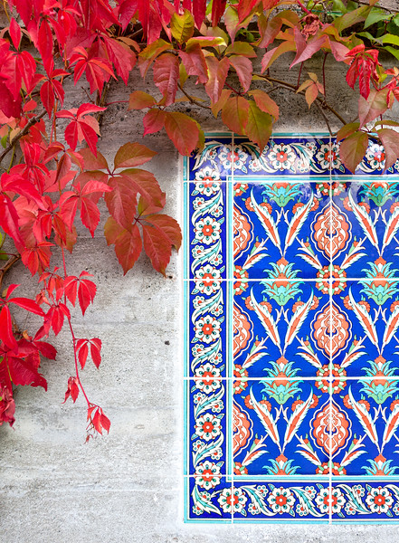 Deep Red Grape Leaves and Tile