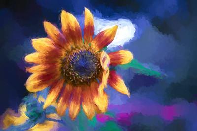 """ETC-3433-WPP1680  """"Sunflower Art"""""""