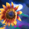 "ETC-3433-WPP1680  ""Sunflower Art"""