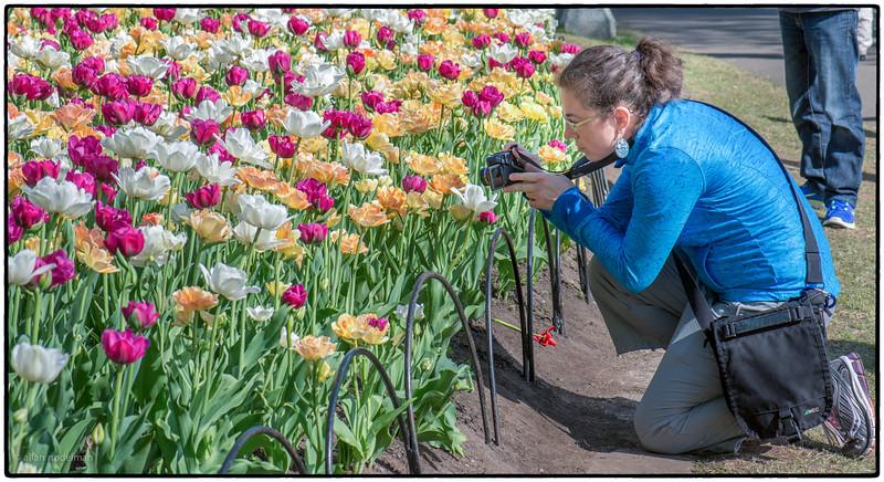 Jessie Capturing a Tulip