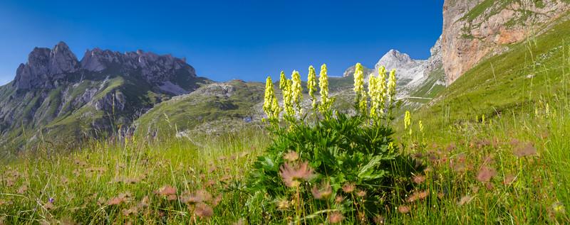 Alle pendici del Mali Vrh, verso le Cime Verdi - foto n° 180715-773556