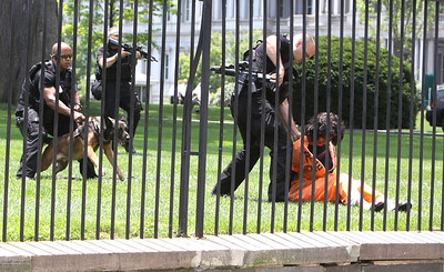 Diane Wilson  of Code Pink that has been on a hunger strike for 50+ days went over the fence at the White House, keep her in your prayers.