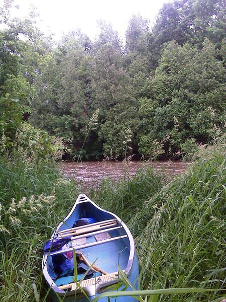 TY - Canoe in Long Grass