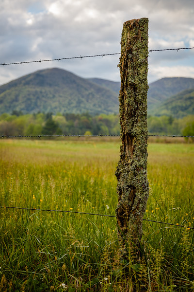 The Fencepost