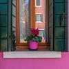 Window on the island of Burano, Italy