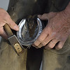 Farrier Shoeing a Horse, Churchill Downs, Kentucky
