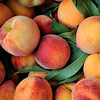 Summer peaches at a farmer's market