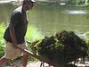 Algae Cleanup 2008 - 09