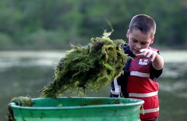 Algae Cleanup