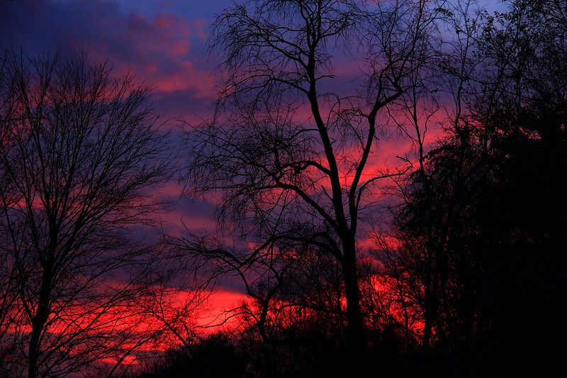 Red sky night,..sailor's delight!