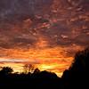 Altocumulus and stratocumulus at sunset