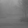 Foggy morning in a suburban neighborhood