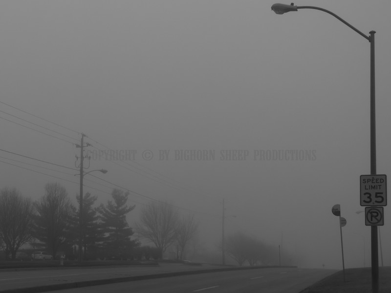 University Avenue being consumed by the fog