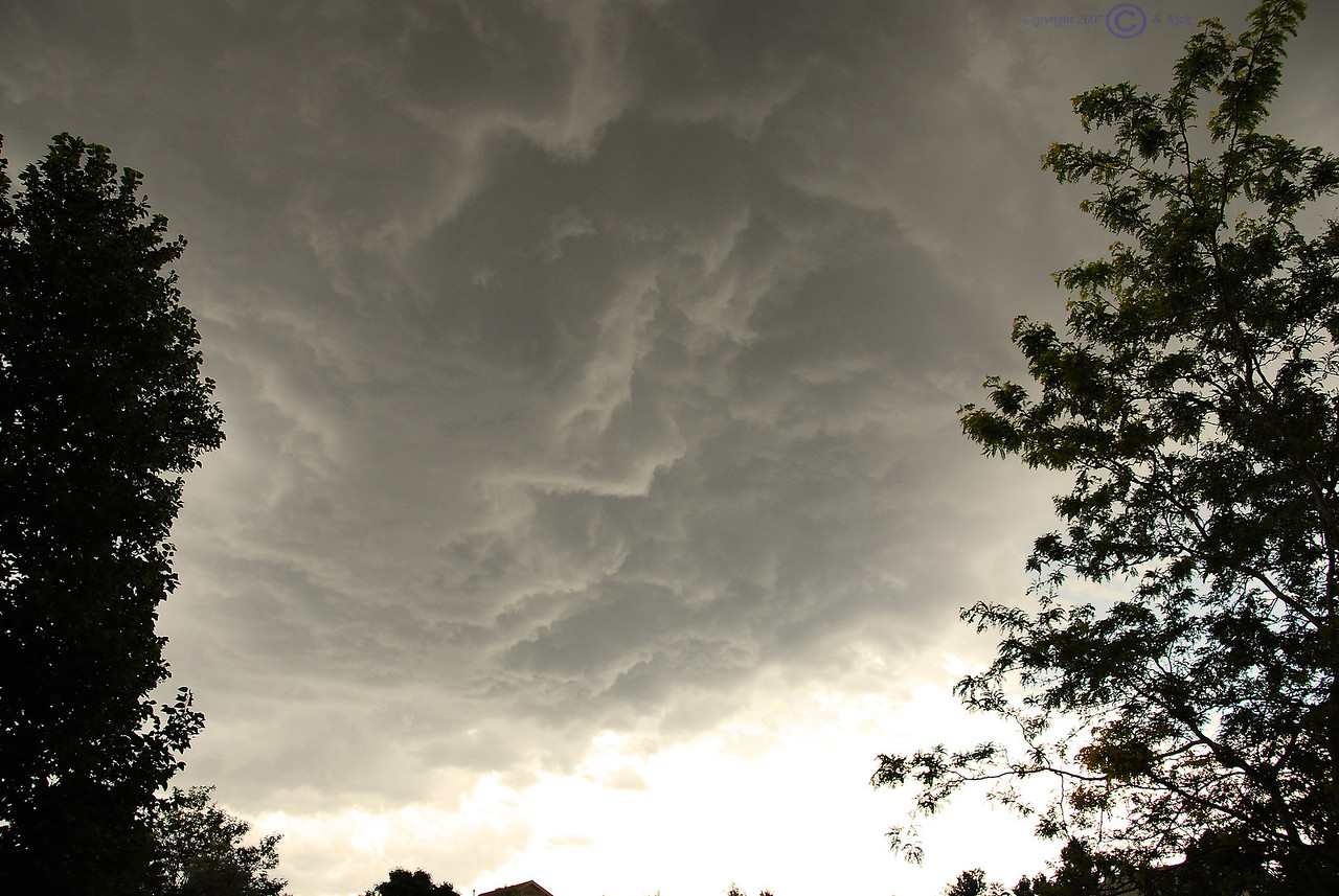 We had a crazy storm tonight. Thought we might have a tornado, but fortunately it was not to be.
