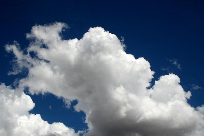 Mid-afternoon cumulus, Reid's Flat, 28 December, 2009.