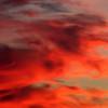 Red dragon rampant. Sunset, Reids Flat, New South Wales, 3 April 2010.