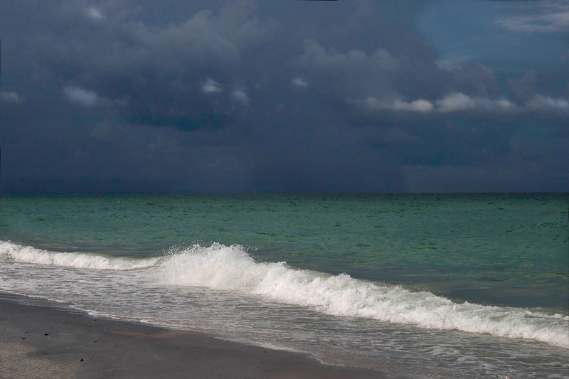 Ready For The Down Pour, Venice, Florida.<br /> 2008
