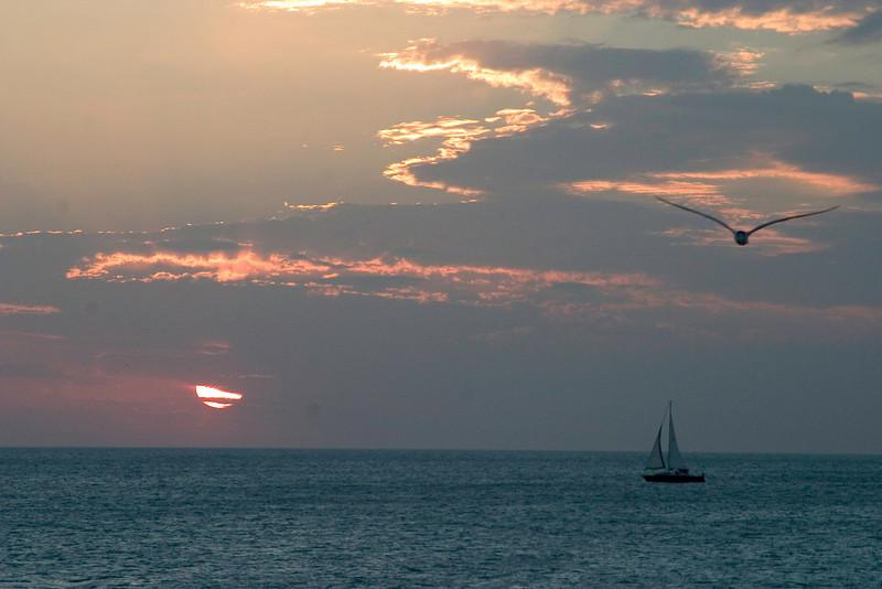 Bluewave Beach, Venice Florida