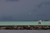 Emerald Waters Off The Jetties, Venice, Florida.<br /> 2008