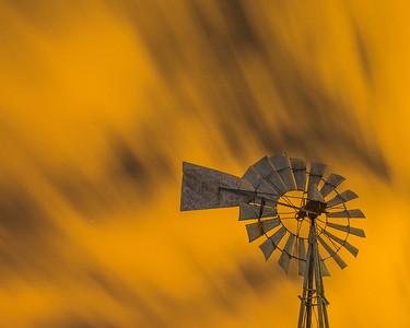 Windmill yellow tight_20170523_0023