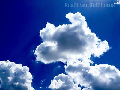 Puppy Clouds