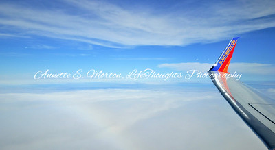 """""""High Above the Clouds"""" Florida Trip"""