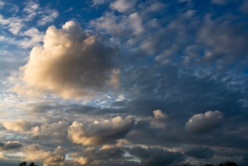 Clouds 6/29/2009