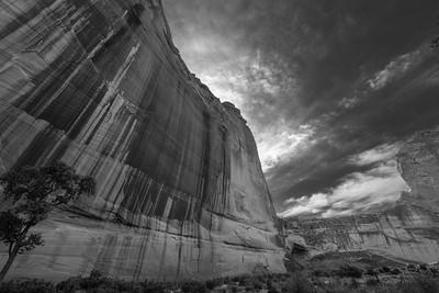 Desert Varnish, Canyon de Chelly, Arizona