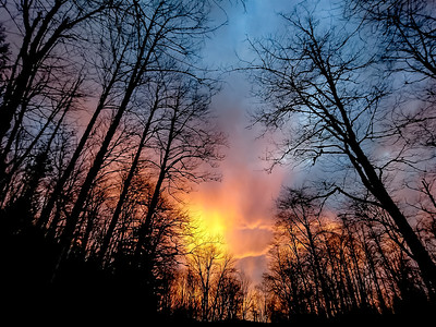 """Evening Glow"""