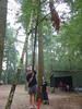 Daar hangt het perfecte kampvuurhout