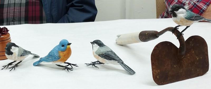JOHN T.'s BIRDS.