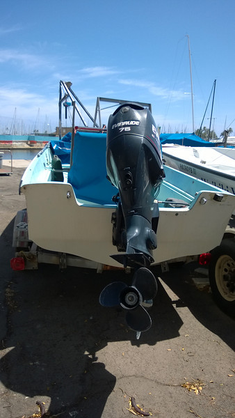Whaler 2