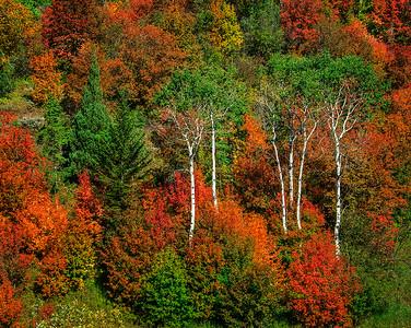 10 Early Autumn