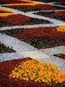 Patchwork Garden