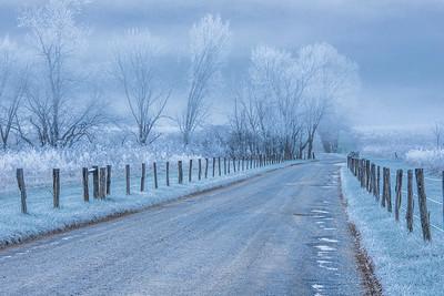 1  A Frosty Morning