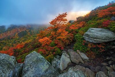 Fall Morning at Rough Ridge