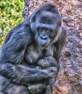 Mother and Baby by Larry Sledge