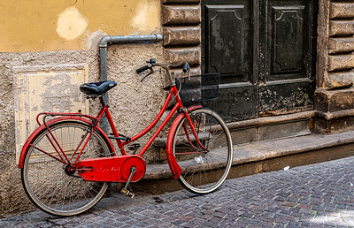 New Seat Old Bike - Linda Springer