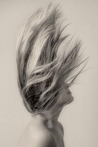 Whipping Hair