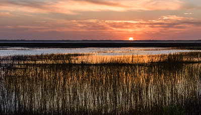 Sun Setting Over the Marsh by Lane Lewis