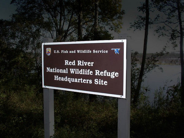 "<div id=""content"" align=""left"" > <p><h3 align=""left""><u>Red River National Wildlife Refuge</u></h3></p> <p align=""left"">555 Sunflower Road</p> <p align=""left"">Bossier City, LA 71112-8780</p> <p align=""left"">(318) 742-1219</p> <p align=""justify"">Friends of the Red River National Wildlife Refuge host birding trips and numerous other events through out the year.  For complete details and a schedule of those events please check their website at:<A HREF=""http://www.friendsofredriver.org/events.html"" TARGET=""***""> <br />Friends of the Red River National Wildlife Refuge</A></p> </div>  <br />"