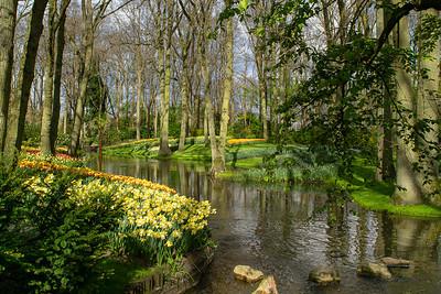 Photo 1 by Kathy D.: Keukenhof Gardens
