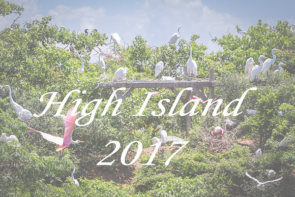 High-Island-2017