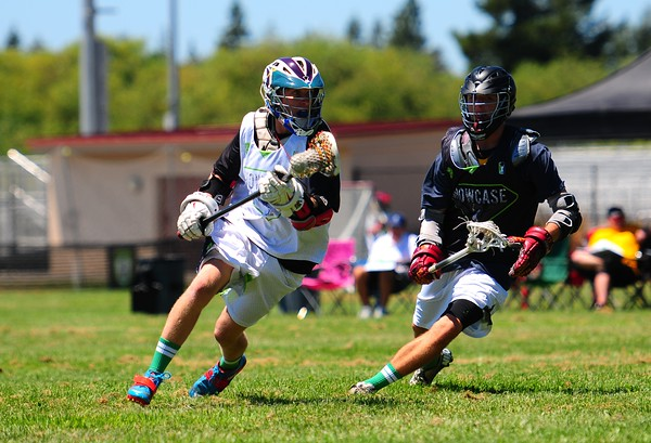 Adrenaline Sonoma Showcase