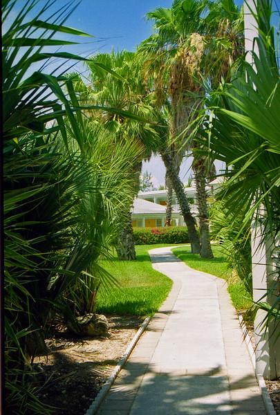 Sidewalk between buildings